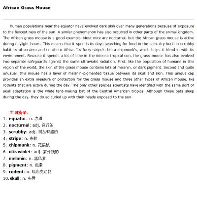 非洲音乐课件背景